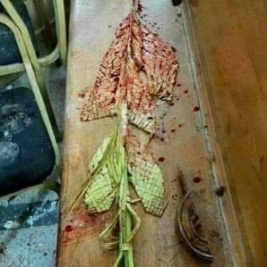 Crenguta de Florii cu sange - Egipt